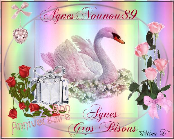 Joyeux Anniversaire Agnesnounou89